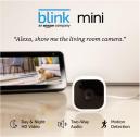 Blink Indoor Mini: Best for hiding