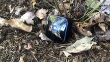 Blink Outdoor Camera Reviews